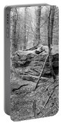 Outcrop, Woods, Dipton Burn Portable Battery Charger