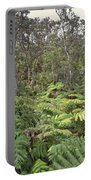 Overlooking The Rainforest Portable Battery Charger