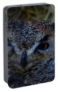 Owl Portable Battery Charger