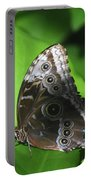 Owl Butterfly On A Cluster Of Green Leaves Portable Battery Charger
