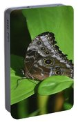 Owl Butterfly With Fantastic Distinctive Eyespots  Portable Battery Charger