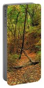 Owl Canyon In Autumn 2 Portable Battery Charger