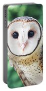 Owl Insight Portable Battery Charger