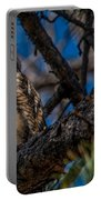 Owlet In A Fir Tree Portable Battery Charger