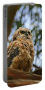 Owlet Lookout Portable Battery Charger