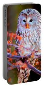 Owlrightythen Portable Battery Charger