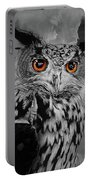 Owls Eye Portable Battery Charger