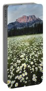 Ox-eyed Daisies And Cascade Mountain Portable Battery Charger