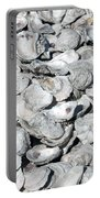 Oyster Shells On Cumberland Island Portable Battery Charger