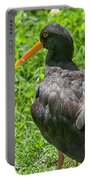 Oystercatcher Portable Battery Charger