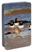 Oystercatchers Portable Battery Charger