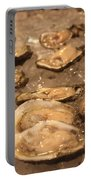 Oysters Portable Battery Charger