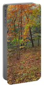 Ozark Forest In Fall 1 Portable Battery Charger