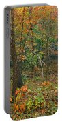 Ozark Forest In Fall 2 Portable Battery Charger
