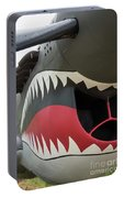 P-40 Warhawk - 2 Portable Battery Charger