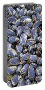 Pacific Blue Mussels Portable Battery Charger