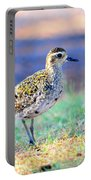 Pacific Golden Plover - 2 Portable Battery Charger