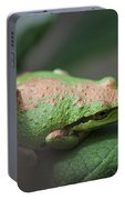 Pacific Treefrog Siesta Portable Battery Charger