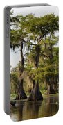 Paddling In The Bayou Portable Battery Charger