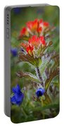 Paintbrush In The Mist Portable Battery Charger
