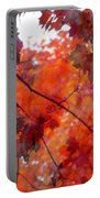 Painted Branches Abstract 5 Portable Battery Charger