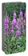 Painted Fireweed Portable Battery Charger