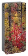 Painted Forest Portable Battery Charger