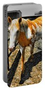 Painted Horse Portable Battery Charger