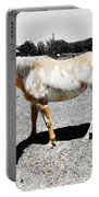 Painted Horse II Portable Battery Charger