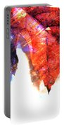 Painted Leaf Series 4 Portable Battery Charger
