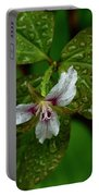 Painted Trillium In The Rain Portable Battery Charger