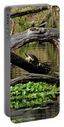 Painted Turtles Portable Battery Charger
