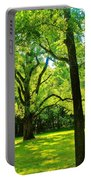 Painting-like Photo Of A Rural Lawn Portable Battery Charger