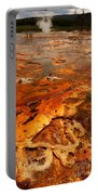Painting Of Nature Portable Battery Charger