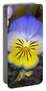 Painting Of Pansey Flower Portable Battery Charger