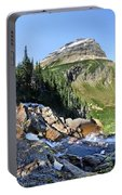 Paiota Falls - Glacier National Park Portable Battery Charger