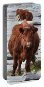 Pair Of Cows Grazing On The Burren In Ireland Portable Battery Charger