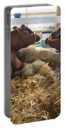 Pair Of Cows Portable Battery Charger