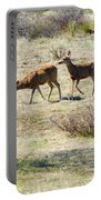 Pair Of Mule Deer Grazing At Chatfield Portable Battery Charger