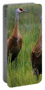 Pair Of Sandhill Cranes Portable Battery Charger