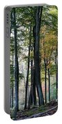 Palatine Forest Portable Battery Charger