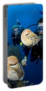 Palau Underwater Portable Battery Charger