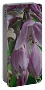Pale Purple Starbursts Portable Battery Charger
