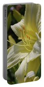 Pale Yellow Lily In A Garden Of Daylilies Portable Battery Charger