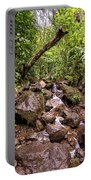 Palikes Stream Along Trail Portable Battery Charger