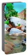 Palm Canyon Park Portable Battery Charger