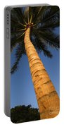 Palm In Blue Sky Portable Battery Charger
