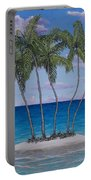 Palm Island Portable Battery Charger