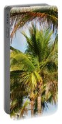 Palm Portrait Portable Battery Charger