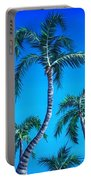 Palm Tops Portable Battery Charger